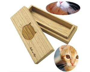 Cat Whiskers Case