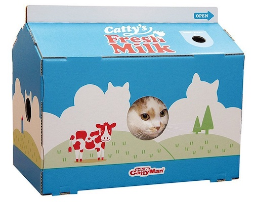 Cat Milk Carton Scratch Box