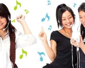 Hi-Kara Karaoke machine