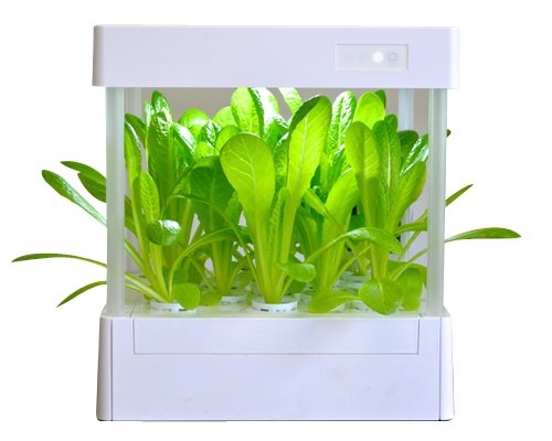 ItPlanter Hydroponic Grow Box