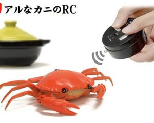 Kani Crab RC Toy