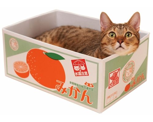 Satsuma Fruit Box Cat Bed