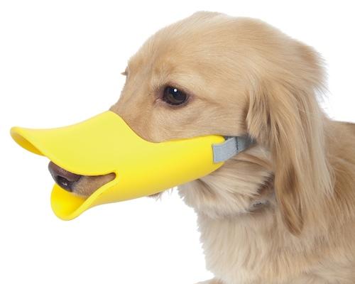 Oppo Dog Muzzle Quack
