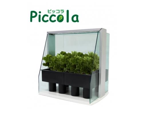 Aspility Piccola LED Hydroponic Grow Box