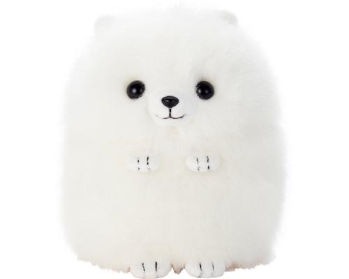 White Pomeranian Mimicry Pet